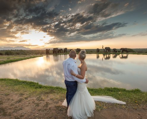 South African wedding destination